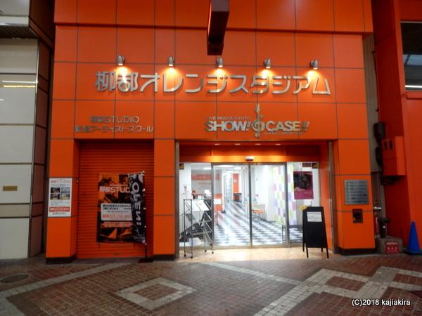 ※写真が異なります※ NJS会場:LIVE HOUSE 新潟SHOW!CASE!!