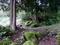 城ノ腰の清水(三条市吉ヶ平・吉ヶ平自然体感の郷)【新潟県の名水】