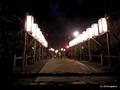 2019年元旦、越後一宮「彌彦神社」へ時間差二年参り