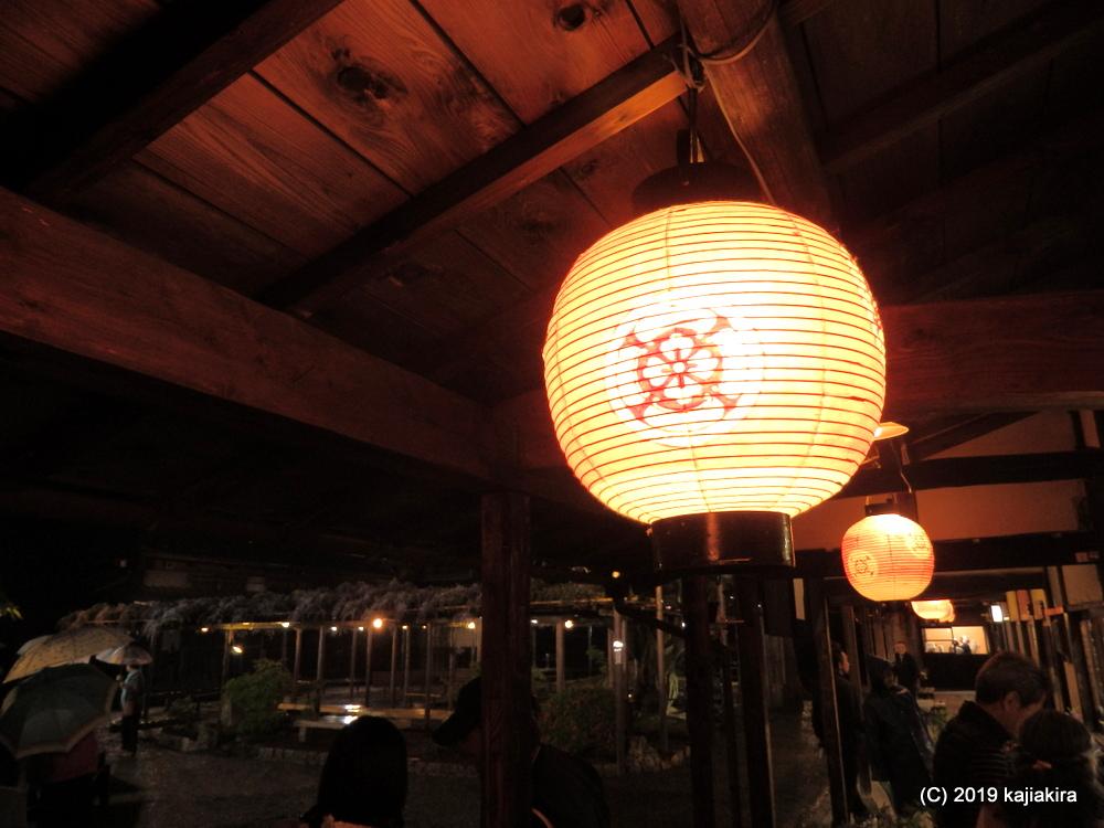 北方文化博物館・藤棚ライトアップ2019
