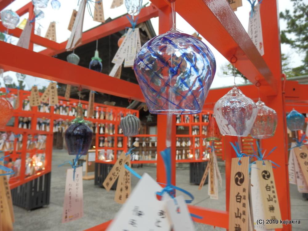 風鈴が涼を呼ぶ、新潟総鎮守・白山神社「開運七夕まつり」2019