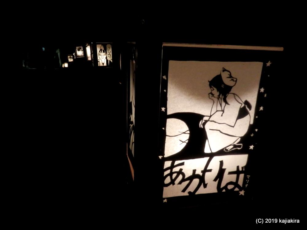 小京都を楽しむ会 AKARIBA2019(加茂市・加茂山公園)