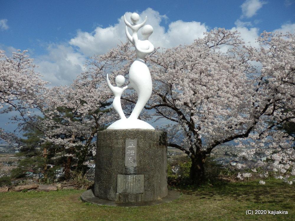 秋葉公園の桜2020