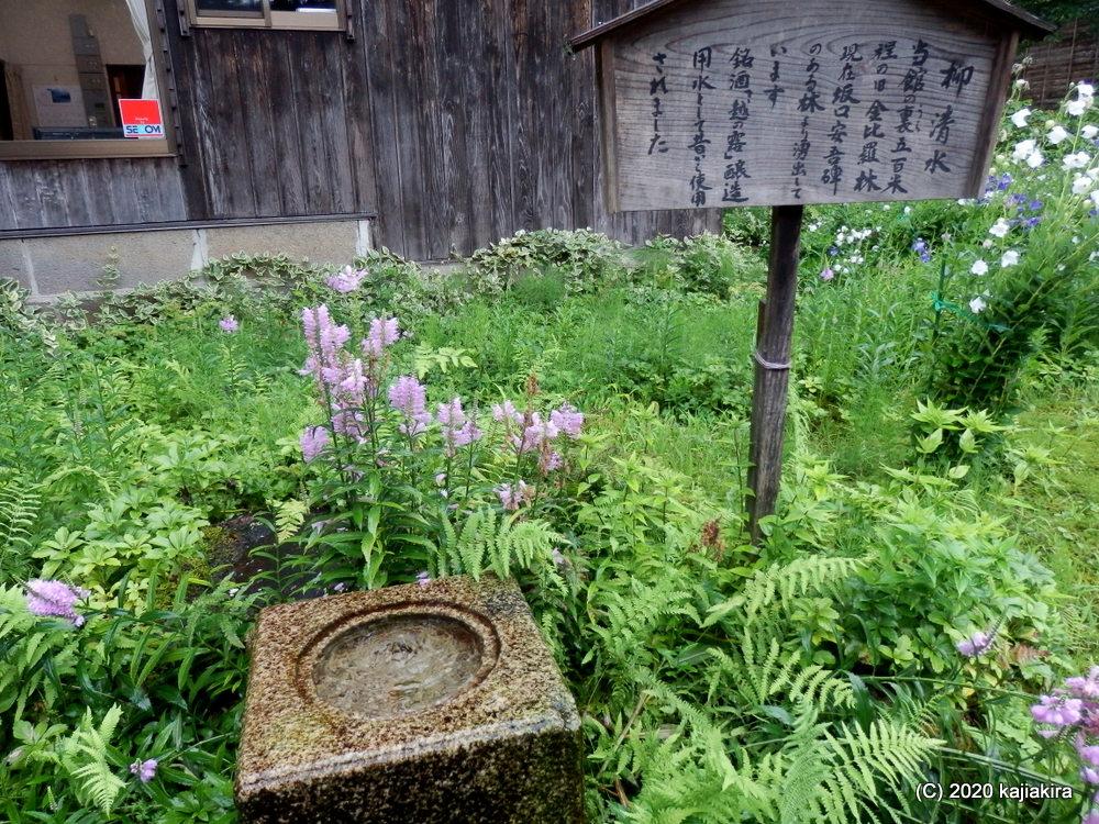 酒蔵の仕込み水だった「柳清水」(十日町市松之山1222)新潟県の名水