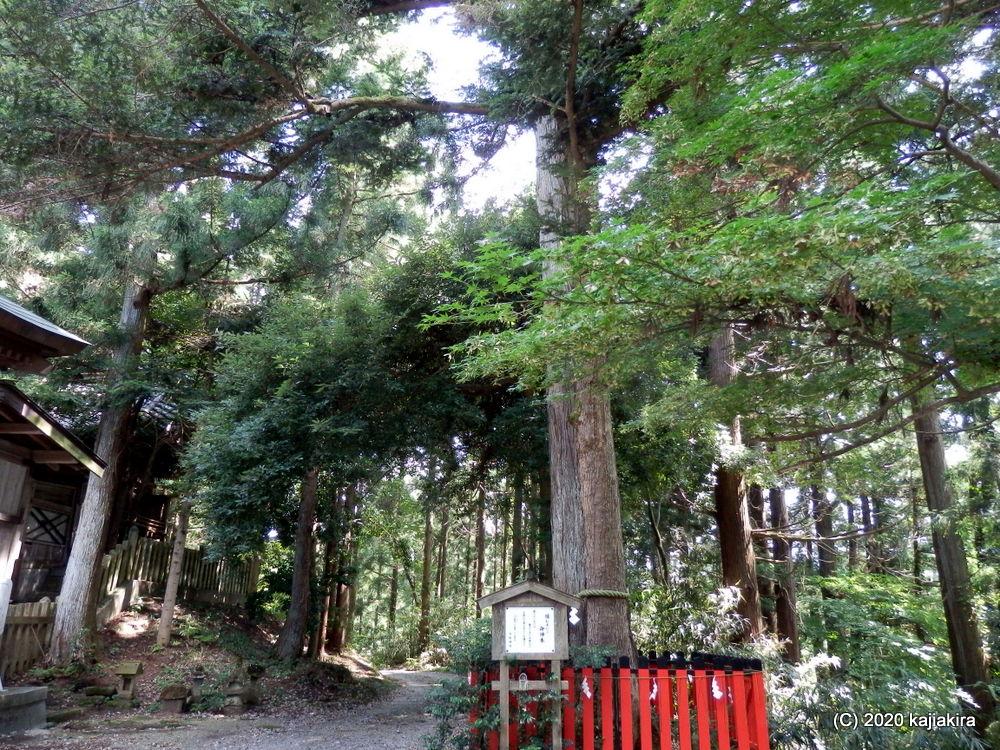 日枝神社(五泉市村松)にて「疫病よけのお札」を