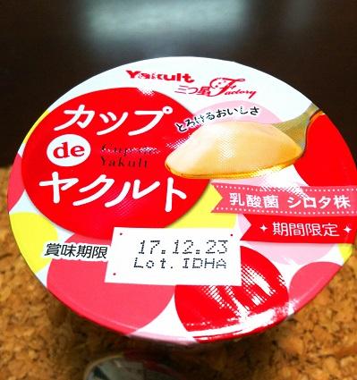 f:id:kajika-fufu:20171214220242j:plain