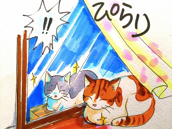 f:id:kajika-fufu:20181230223326j:plain