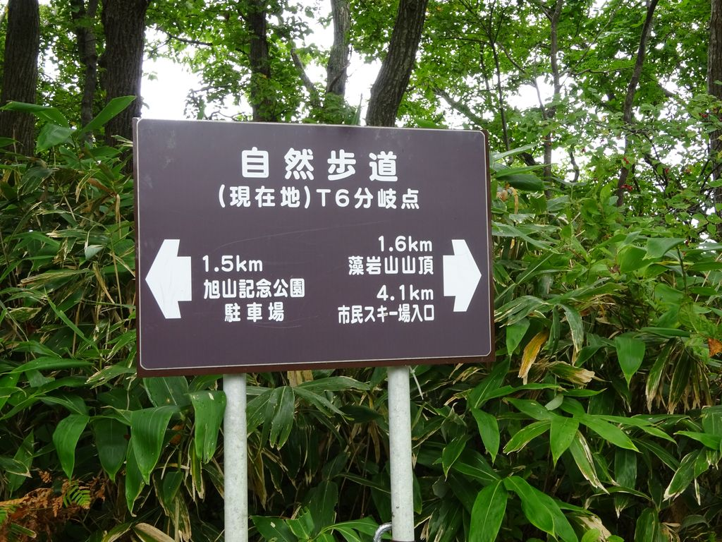 f:id:kajimo_hkd:20160918180213j:plain:w450