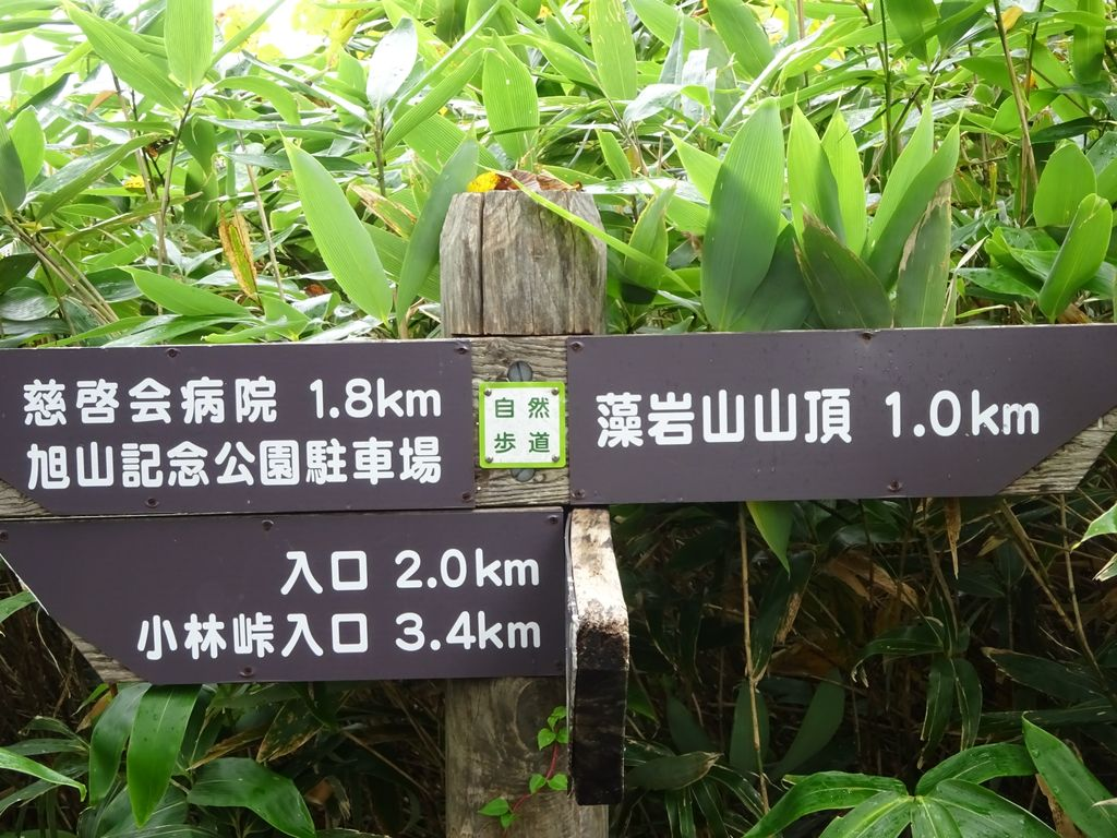 f:id:kajimo_hkd:20160918180436j:plain:w450