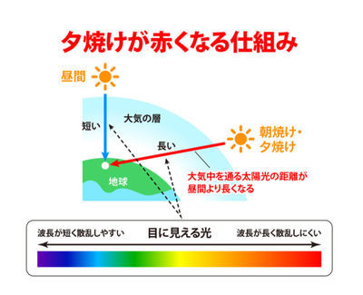 f:id:kakadaisyou:20210509143549j:image
