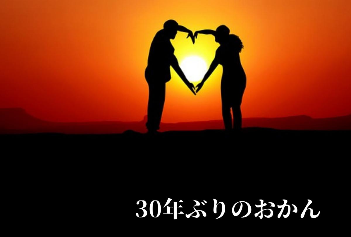 f:id:kakadaisyou:20210509193146p:plain