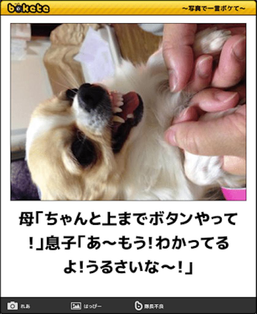f:id:kakakamari:20170302090950p:image