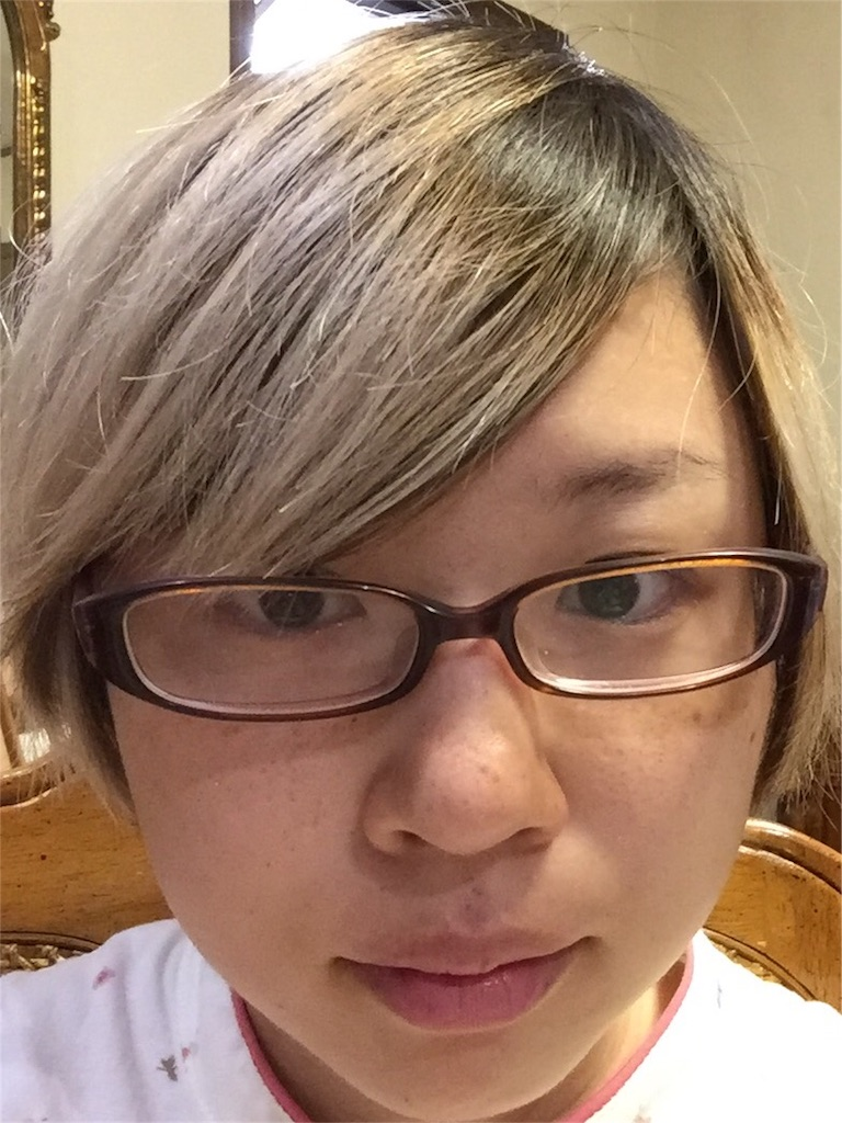 f:id:kakakamari:20170517224715j:image
