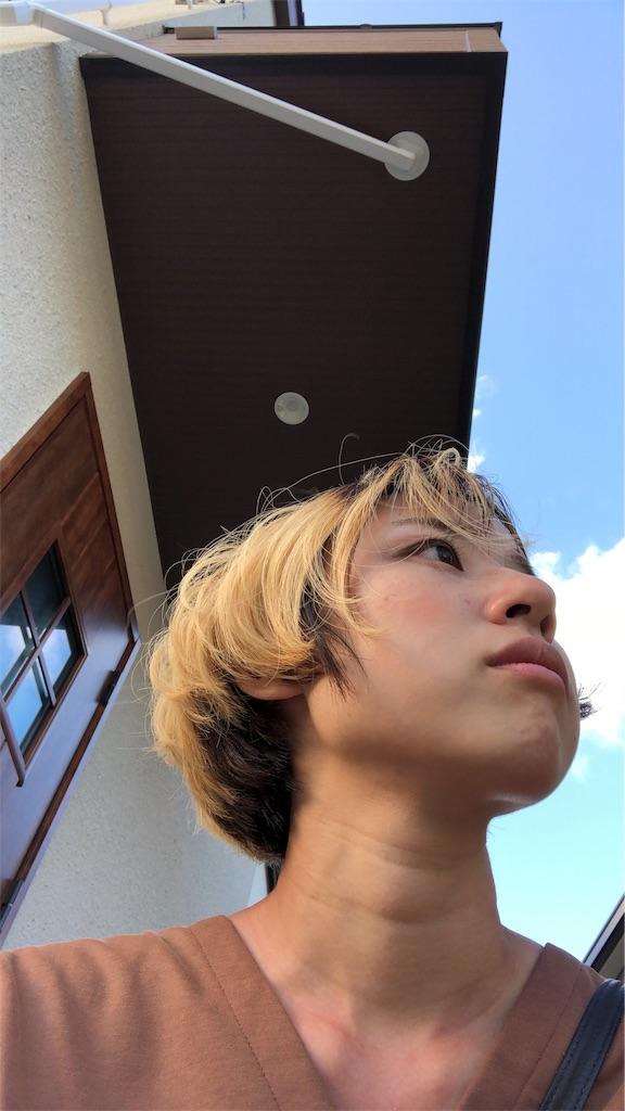 f:id:kakakamari:20181031190318j:image