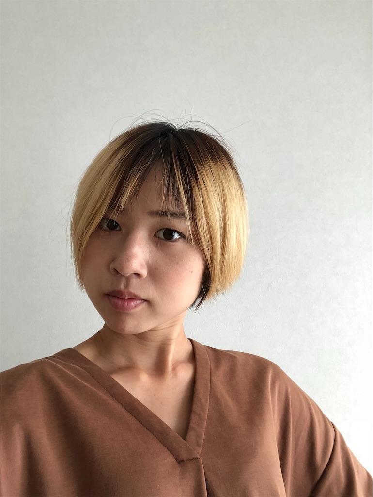 f:id:kakakamari:20181117132859j:image