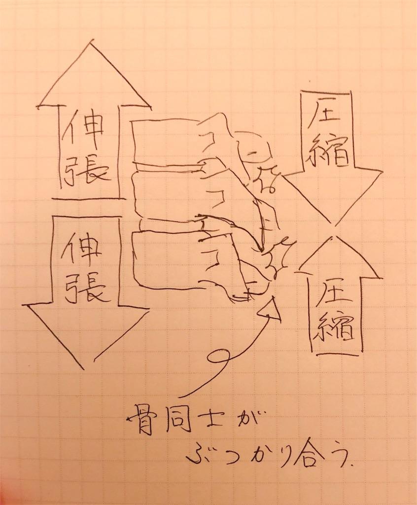 f:id:kakeru579:20191216165106j:image