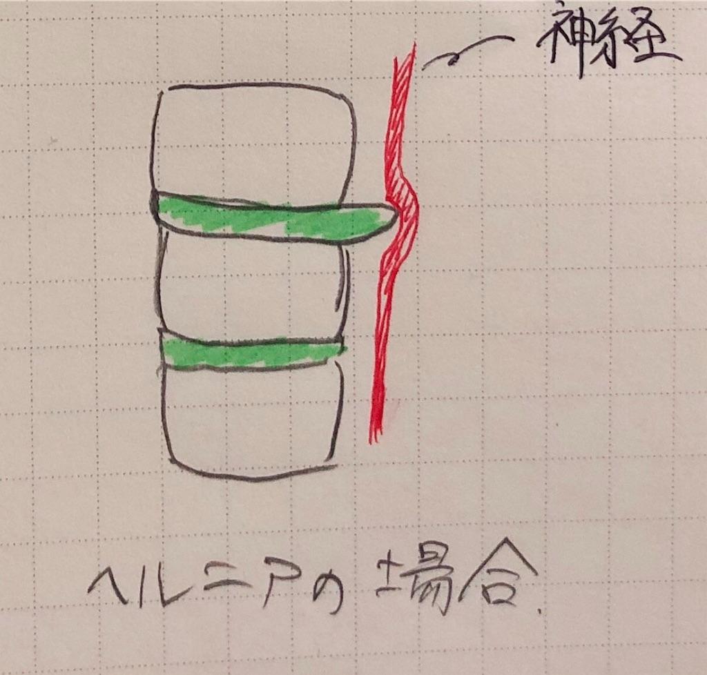 f:id:kakeru579:20191230103927j:image
