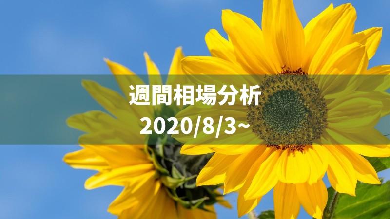 f:id:kakeruFX:20200802111920j:image