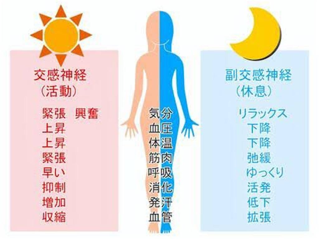 f:id:kakeru_igarashi:20210314170832j:image