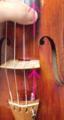 弦の張り替え方9 東京・中野・練馬・江古田ヴァイオリン・ヴィオラ・