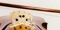 移弦4 東京・中野・練馬・江古田・ヴァイオリン・ヴィオラ・音楽教