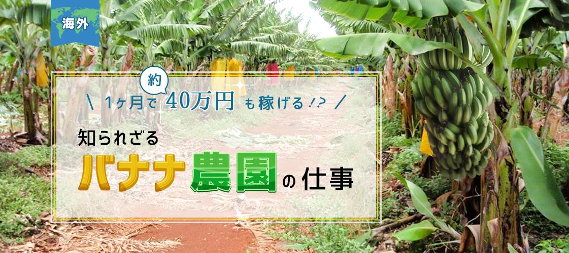 f:id:kakijiro:20150714174912p:plain