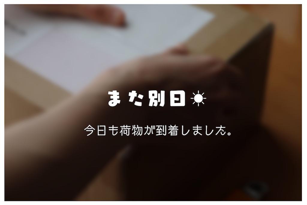 f:id:kakukuma_zakka:20210617004644j:image