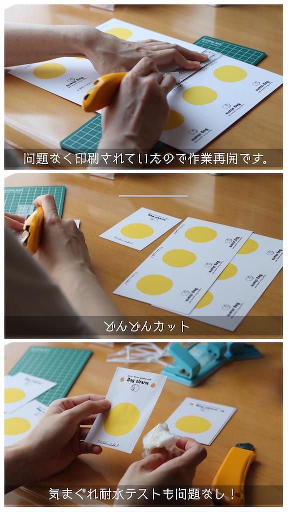 f:id:kakukuma_zakka:20210617013145j:image