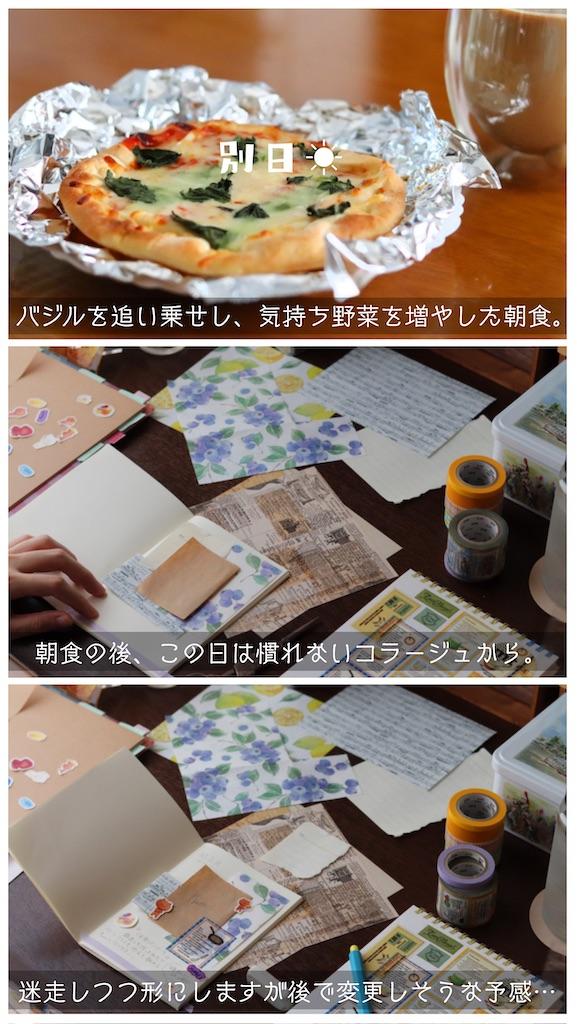 f:id:kakukuma_zakka:20210714213953j:image