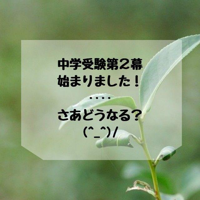 f:id:kakusan57:20200812205202j:plain