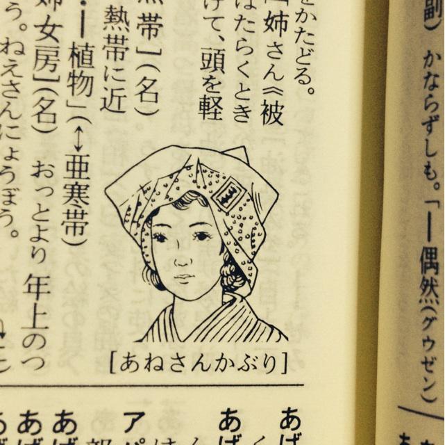 ほっかむりいろいろ - kakushisetutoshokan's diary