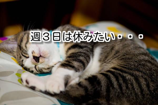 f:id:kakuyasusim2018:20181003014452j:plain