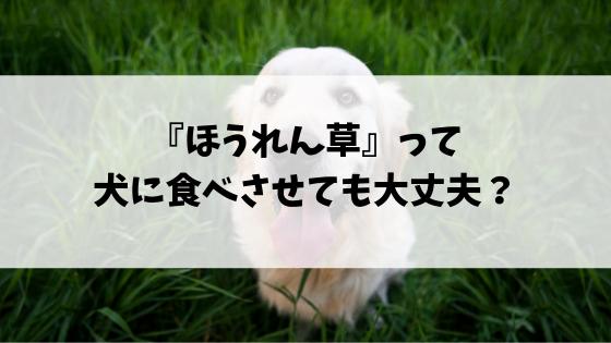 f:id:kakuyasusim2018:20190326013804p:plain