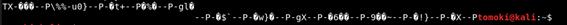 f:id:kakyouim:20200211165217p:plain