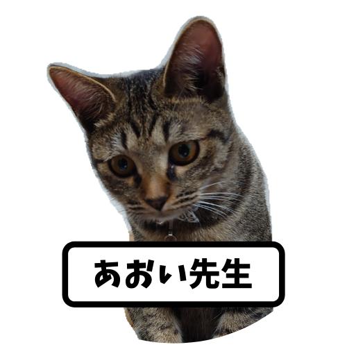 f:id:kamasanchi:20210321044856p:plain