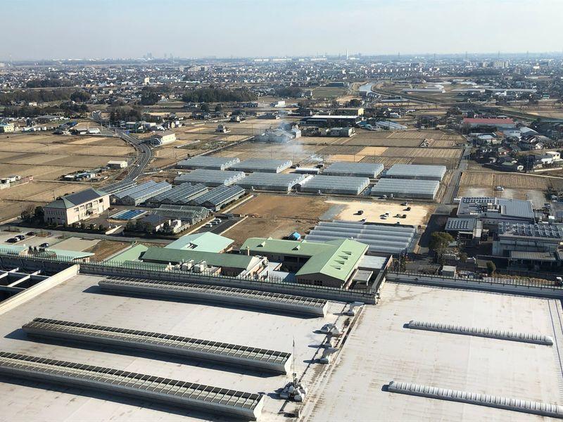展望台からの眺め(工場とビニールハウス)