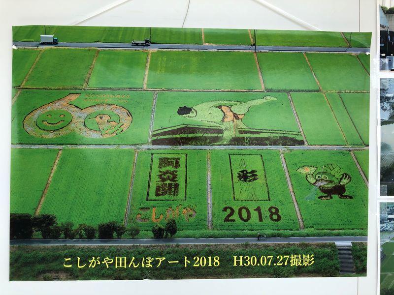 2018年版こしがや田んぼアート