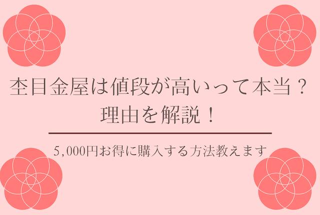f:id:kame_reon:20201222102428p:plain