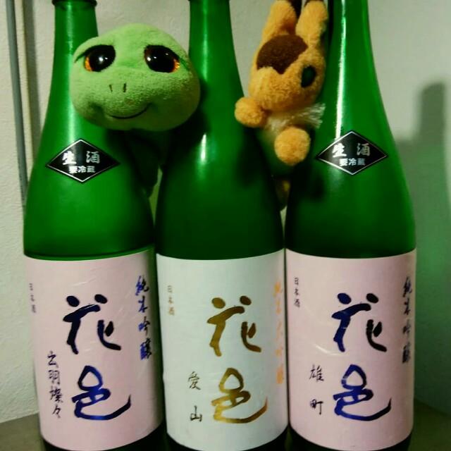 f:id:kamekichisyouten222:20190613180725j:image
