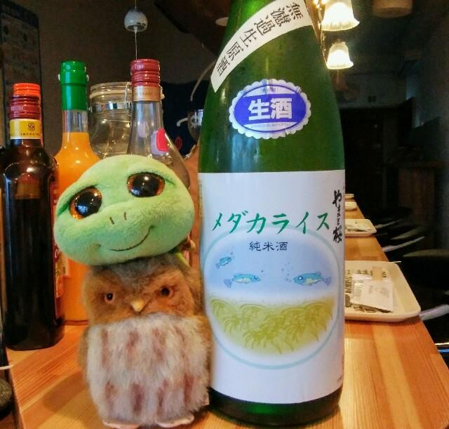 f:id:kamekichisyouten222:20191009172809j:image