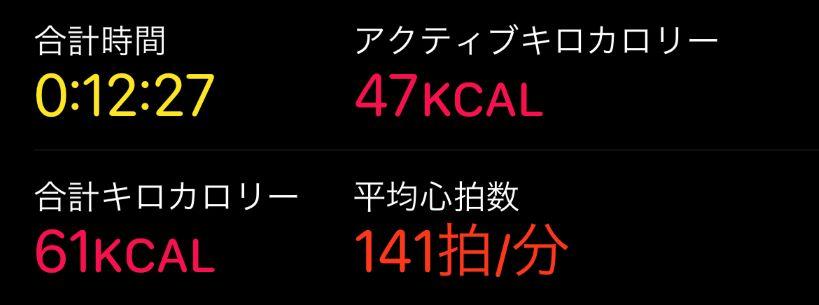 f:id:kamekodiary:20201208153906j:plain