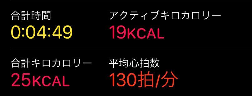 f:id:kamekodiary:20201208154008j:plain