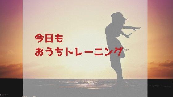 f:id:kamekodiary:20210110181836j:plain