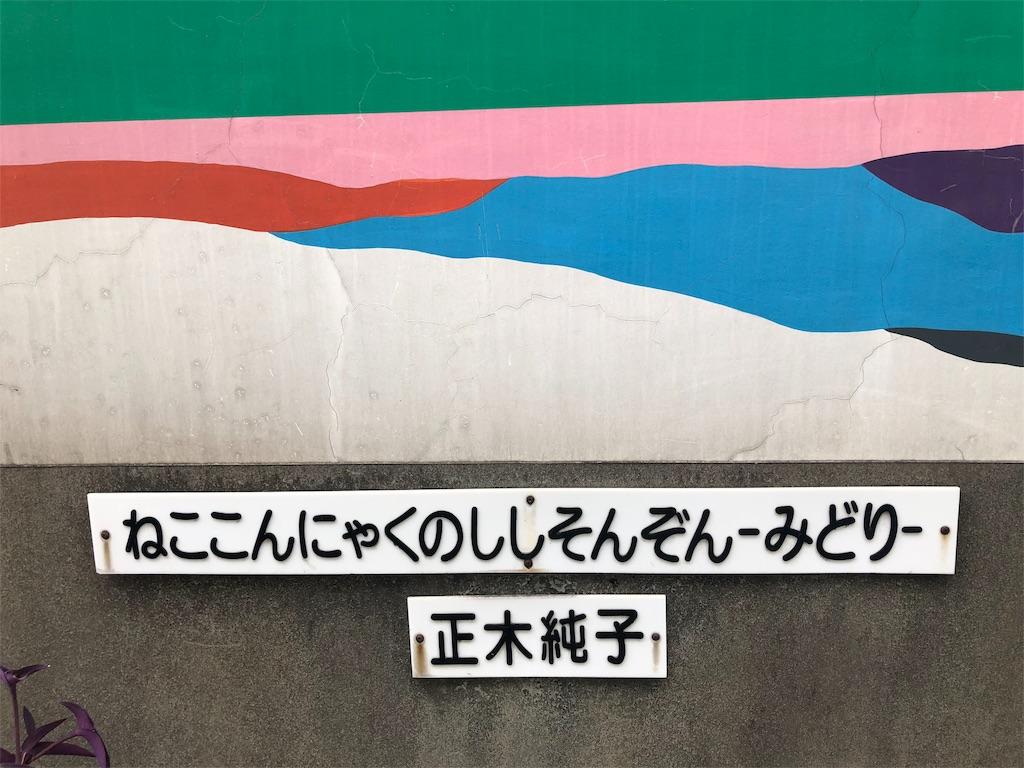 f:id:kamemochi:20200610195244j:image
