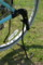 [LOUIS GARNEAU LGS-TR2 2008][クロスバイク][前後子乗せ][Yepp Mini]