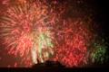 京都新聞写真コンテスト ビアンカ燃えるがごとく