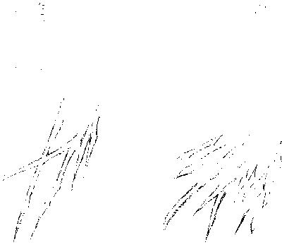 f:id:kametaro237:20170203194405p:plain