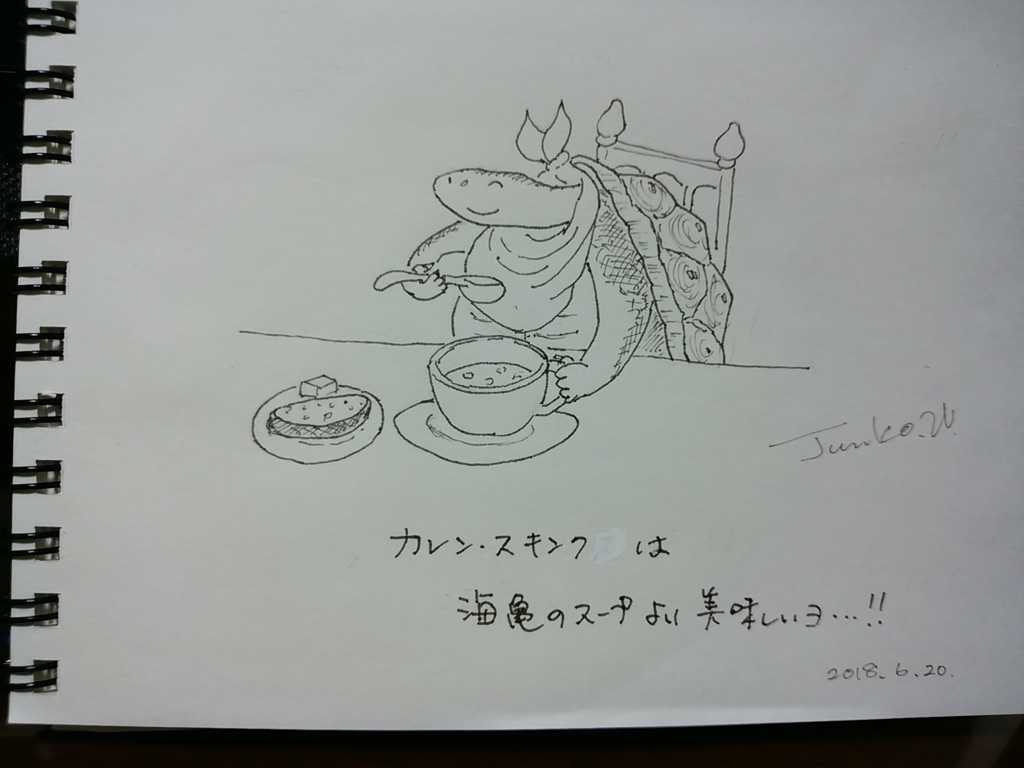 f:id:kameusakiji:20180620235857j:plain
