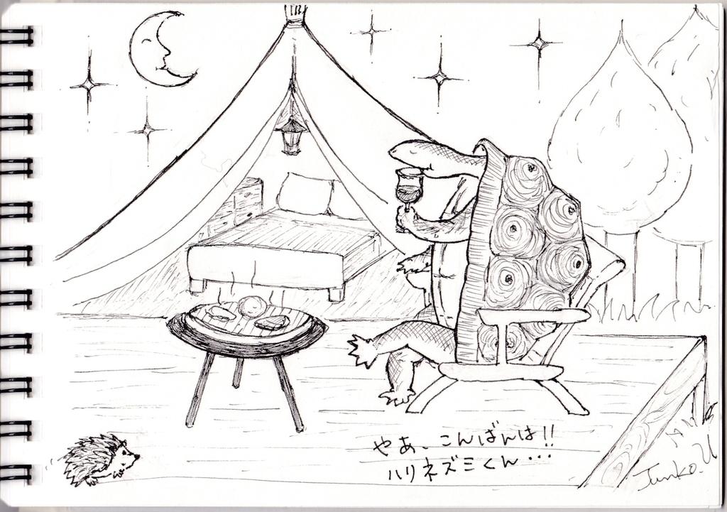 f:id:kameusakiji:20181103215857j:plain