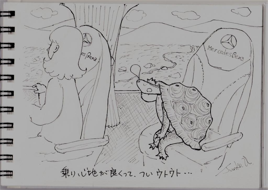 f:id:kameusakiji:20190122004547j:plain
